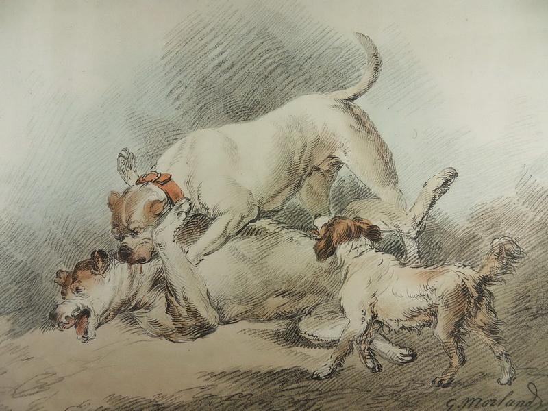 hunde kampf spiele